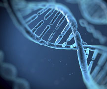 Genome Project Could Be Medicine's Future